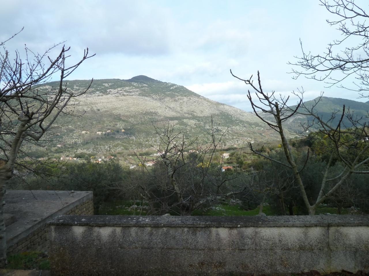 Rustico Campo Soriano